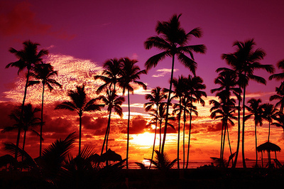 beach, beautiful, lights, sunset, tropical