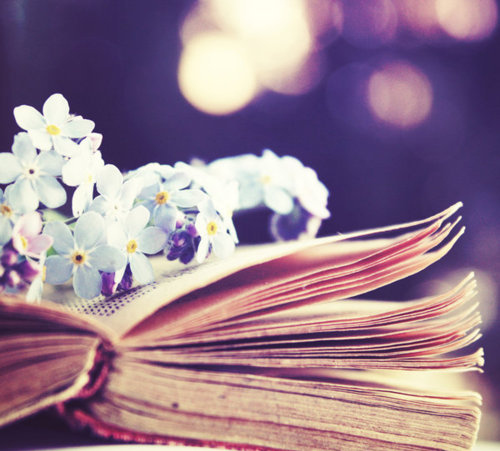 bokeh, book, cute, flowers, lights