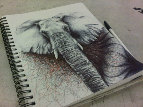 animal, art, drawing, elephant, pencil