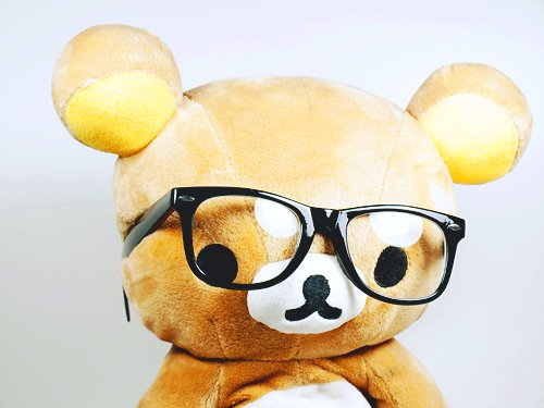cute, glasses, japan, japanese, kawaii, pink, rilakkuma, san-x
