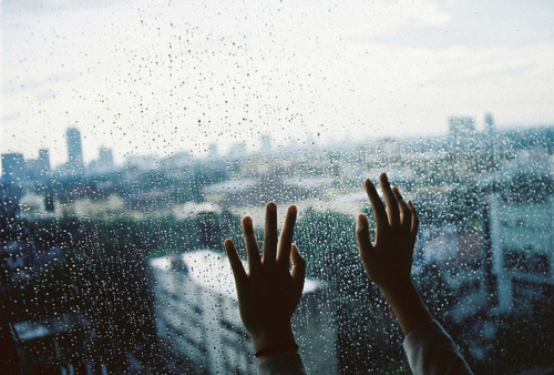 hands, rain, windows