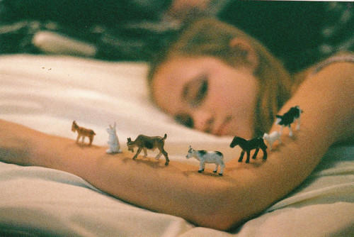 animals, bed, bunnie, cow, farm animals, film, girl, goat, horse, irl in bed, rosiecheeks, vintage