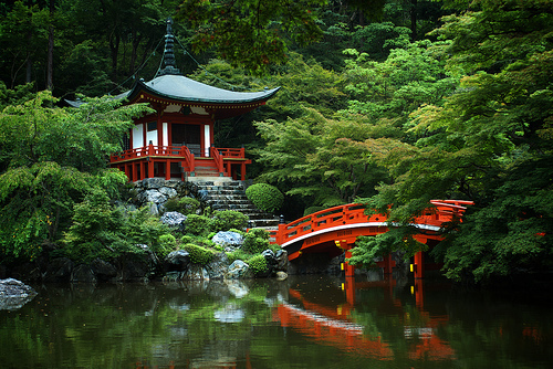 beautiful, bridge, chinese, ferns, pagoda