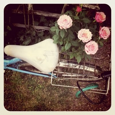 bike, blue, cute, hot, oldschool, pretty, ride, rose, summer, vintage