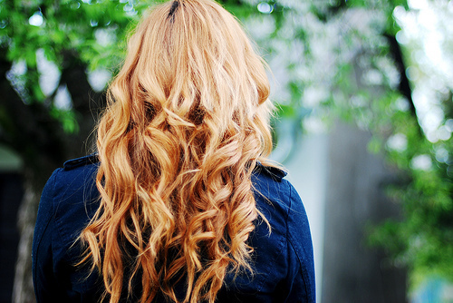 blond, blonde, curl, curls, curly