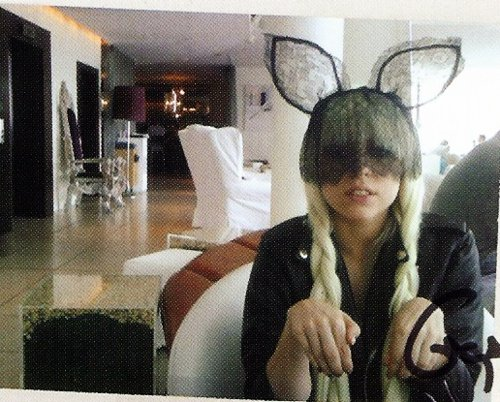 bunny, cute, easter, gaga, lady gaga