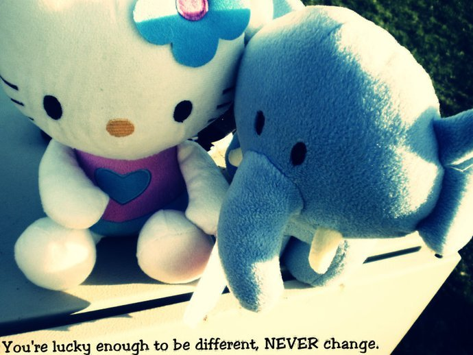 cute, elephant, hello kitty, teddy, wilddiamonds