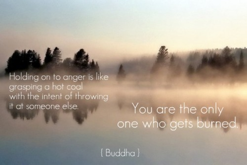 anger, angry, blue, buddha, buddhism, buring, burn, burned, coal, fire, forest, hate, hatred, heat, hot, inspiring, lake, life, love, peace, people, quote, quotes, sky, smog, smoke, tree, trees, truth, typography