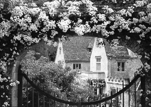 architecture, b&w, black and white, black n& whie, cottage, flowers, garden, gate, house, roses