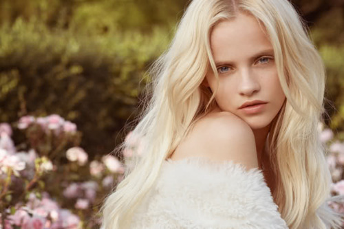 beautiful, beauty, blonde, field, girl, hair, lady, lovely, meadow, model, nice, photo, photography, pretty, white, woman