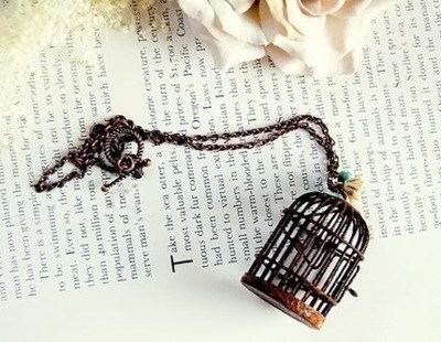 bird, bird cage, book, cage, flower, quote, rusty, text