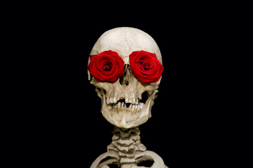 caveira, flower, red, roses, separate with comma, skull, you are not in this alone