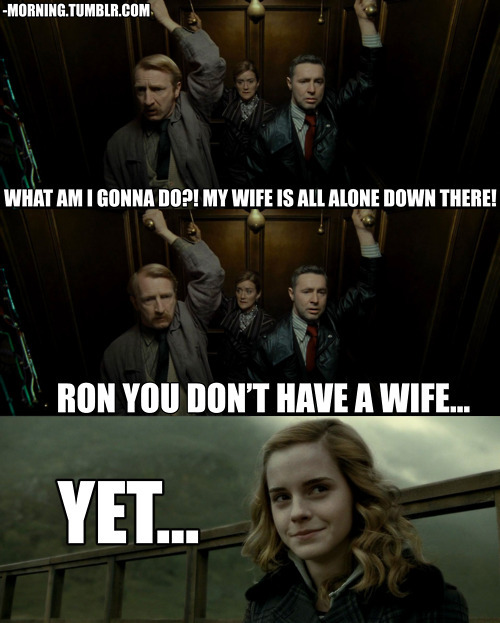 Funny Harry Potter And Hermione Memes : Harry potter ron and hermione meme