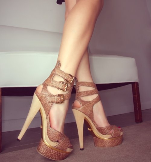 fashion, gucci, heels, hot, legs, shoes