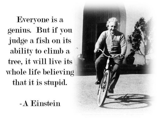 albert einstein, genius, quote