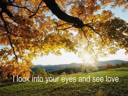 autumn, eyes, fall, love, nature