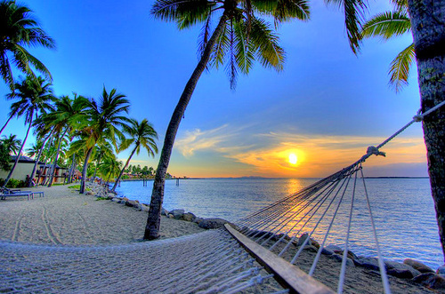 beach, hammock, palms, palms tree, summer, sunset
