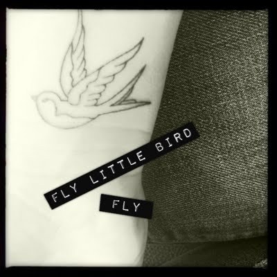 bird, fly, little bird, swallow, swallow tattoo