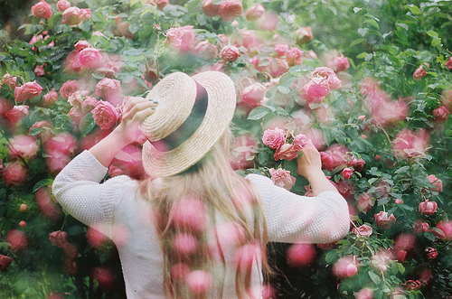 blonde, country, delicate, fashion, flowers, garden, girl, hat, lovely, nature, photography, roses, spring, summer, sweater, sweet, vintage, woman