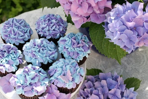 blue, cupcake, cute, delicious, flower