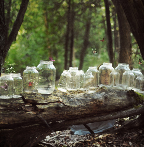 bottle, bottles, butterflies, butterfly, dream