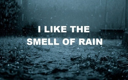 dead worms, death, rain, text, the smell of rain