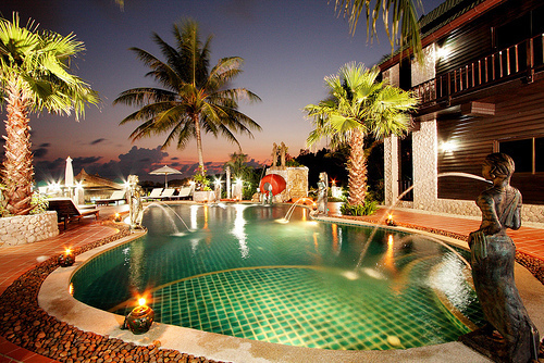 luxury, palm trees, swimming pool