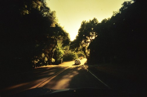 35mm, angeles forest, film, light, road, trees