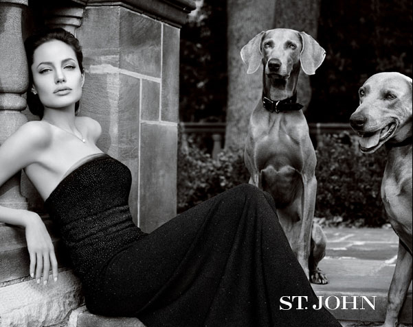 angelina, angelina jolie, black and white, dogs, fashion