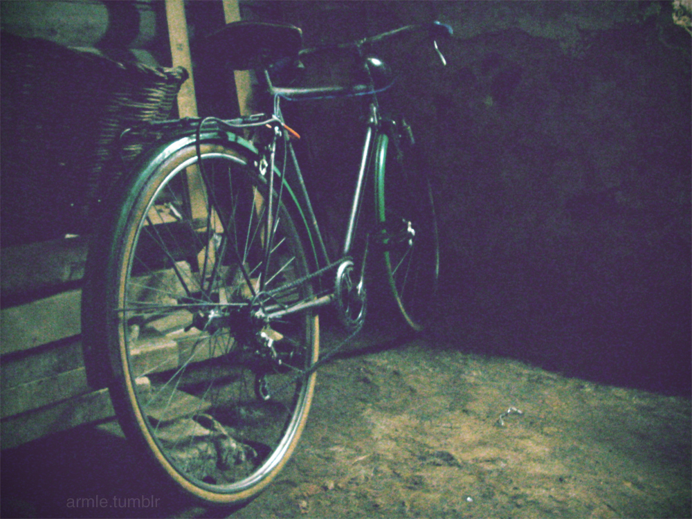 bici, bicicleta, bicycle, bike, grain