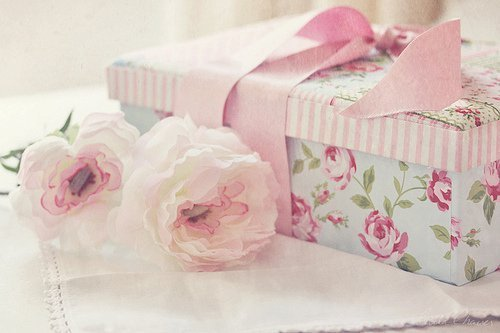 blue, bow, box, feminine, floral