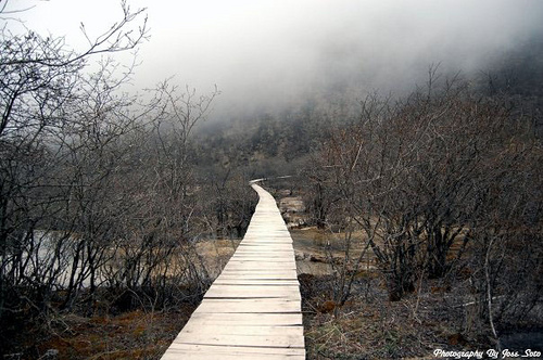 boardwalk, dark, eerie, ghosts, path