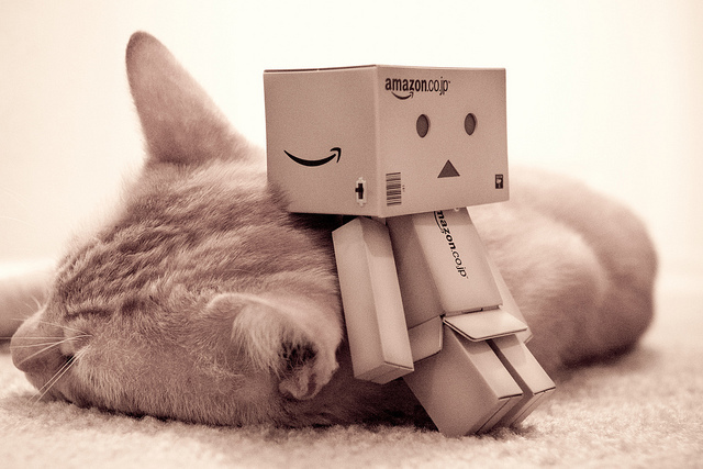 cat, cute, danbo, inspiring, lovely
