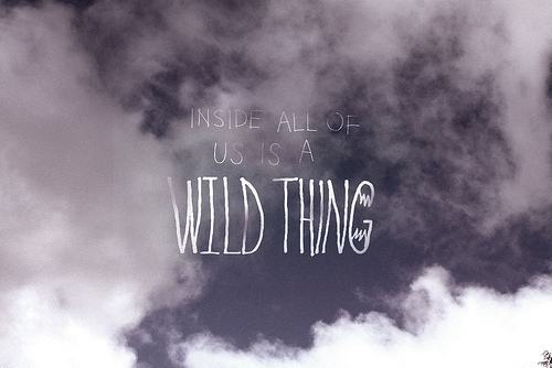 clouds, escape, explore, free, freedom, inside, quote, saying, self, text, typography, wild, words, writing, you