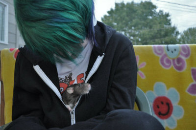 green hair, rat, scene