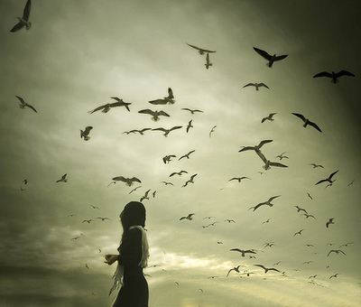 birds, girl, gray, scarf, sky, storm