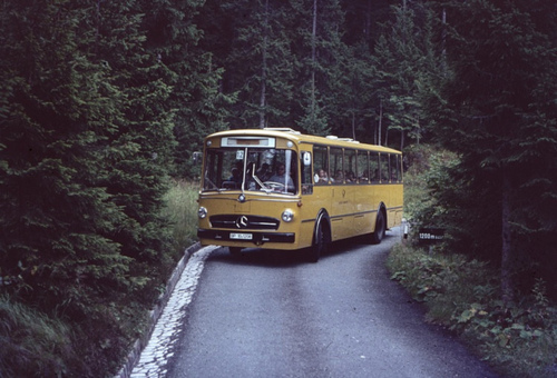 bus, coach, school bus, vintage