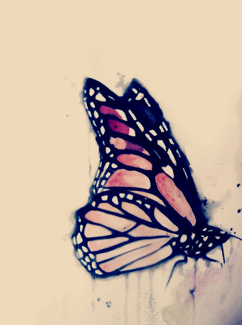 butterfly, cute, drawings, draws, paint, painting, photoshop, watercolour