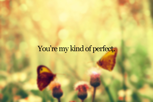 butterfly, him is my kind of perfect, image, kind, perfect, photo, quote, you