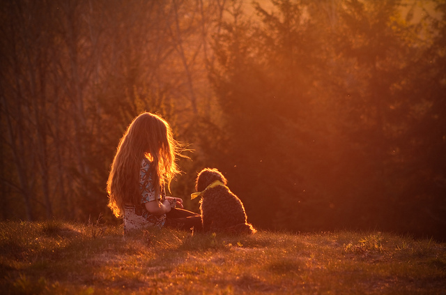 cute, dog, evening, friends, girl