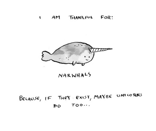 cute, drawing, morre serio, narwhal, typography
