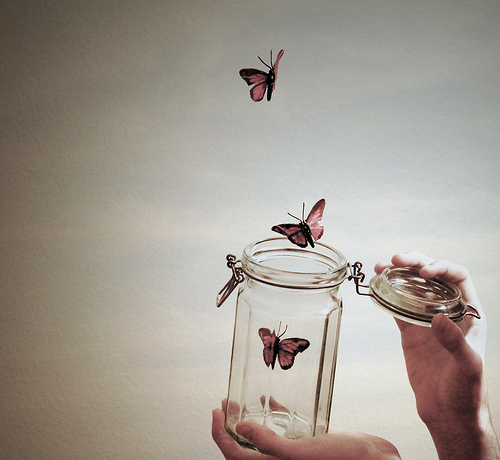butterfly, cute, fly, hands, indie, jar, photography, pretty, vintage