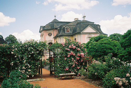 flowers, garden, house, mansion, nature, photography, pink, sky