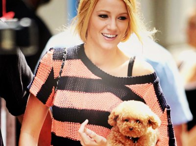 Blake Livelypuppy on Blake Lively  Fluffy  Puppy   Inspiring Picture On Favim Com