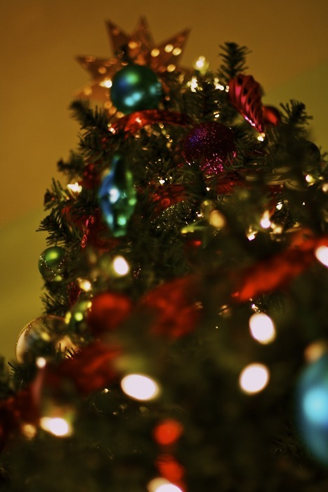 bokeh, christmas, christmas lights, christmas tree, ornaments