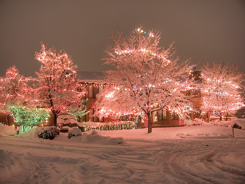 christmas, christmas lights, house, lights, pretty, rubaline, snow, trees, winter, winter wonderland