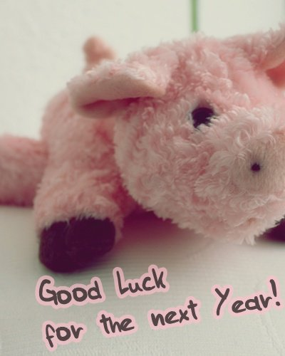 good luck, luck, new year, pig, pink