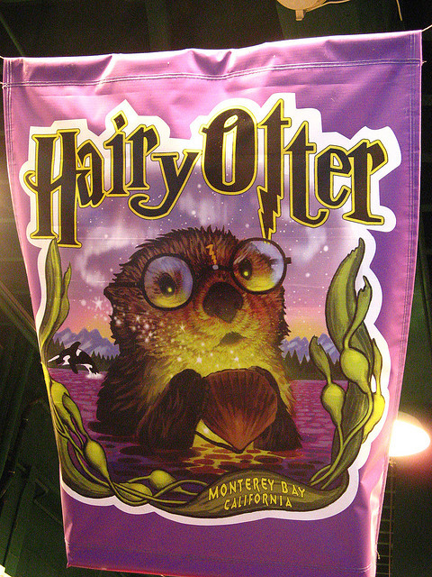 hairy, harry potter, otter