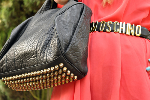 alexander wang, fashion, moschino