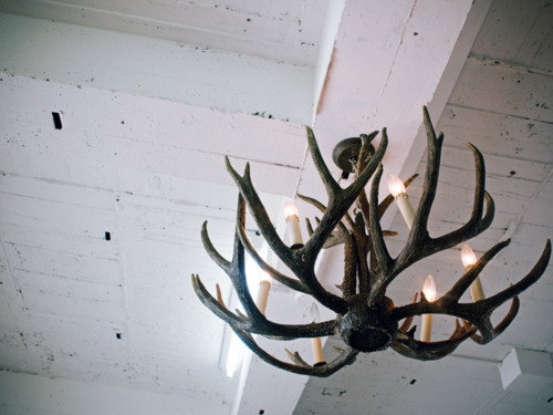 antlers, chandelier, decor, rustic, winter